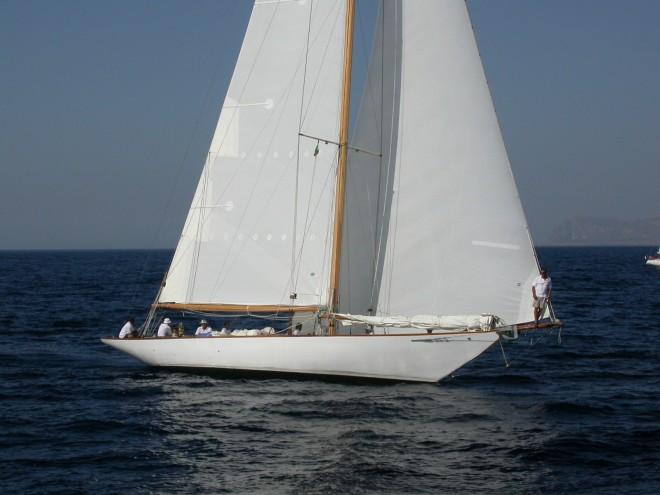 DSCN3146